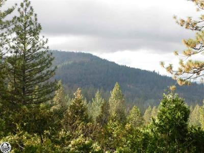 Twain Harte Single Family Home For Sale: 19420 Middlecamp - Sugar Pine Road
