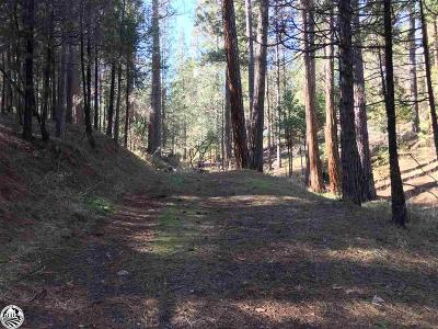Groveland Residential Lots & Land For Sale: 20043 Pine Mountain Drive