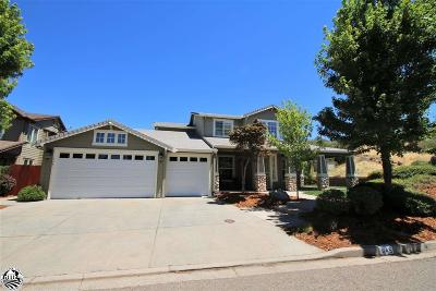 Sonora Single Family Home For Sale: 645 Twilight Court