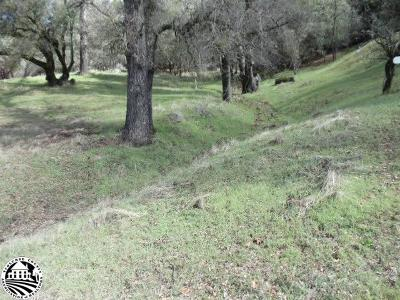 Groveland Residential Lots & Land For Sale: Unit 4-Lot 422 Pine Mountain Drive #422