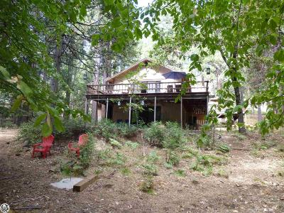 Twain Harte Single Family Home For Sale: 19497 Middle Camp Sugar Pine Road