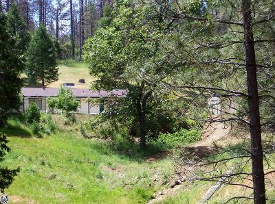 Groveland Single Family Home For Sale: 20575 Whites Gulch Rd