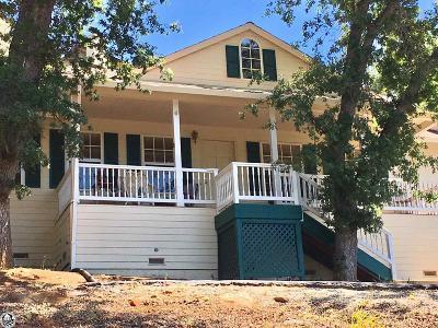 Groveland Single Family Home For Sale: 12631 Tannahill Drive
