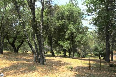 Groveland Residential Lots & Land For Sale: Hillcroft Drive #12-227