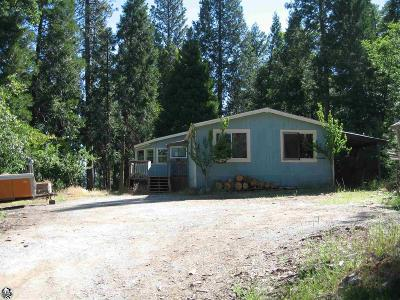 Twain Harte Single Family Home For Sale: 24505 Center Camp Road