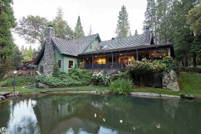 Sonora Single Family Home For Sale: 22556 Longeway Road