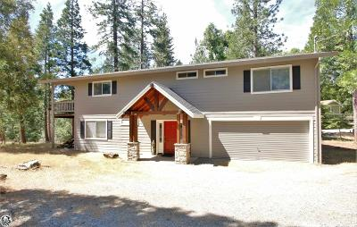 Twain Harte Single Family Home For Sale: 23030 Solitaire Court