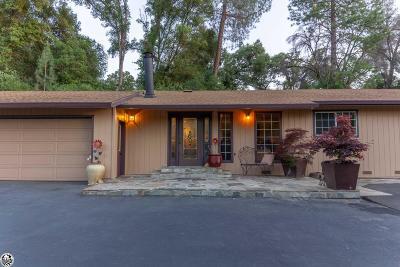 Sonora Single Family Home For Sale: 12021 Campo Seco Road