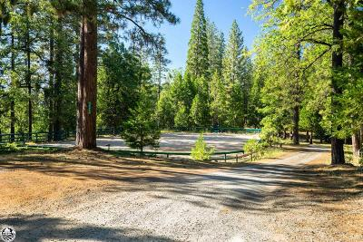 Twain Harte Residential Lots & Land For Sale: Lot 7 Center Camp