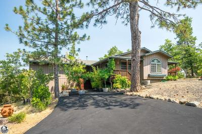 Twain Harte Single Family Home For Sale: 19360 Middlecamp Sugar Pine Road