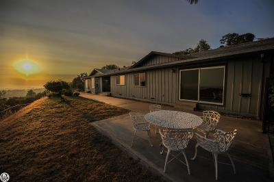 Sonora Single Family Home For Sale: 20050 Gibbs Drive