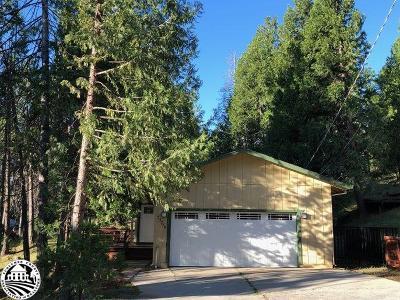 Twain Harte Single Family Home For Sale: 23778 Leisure Drive