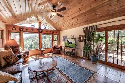 Columbia Single Family Home For Sale: 24060 Experimental Mine Road