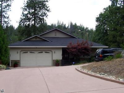 Groveland Single Family Home For Sale: 20773 Non Pareil Way #162