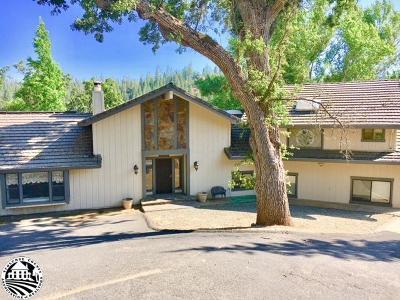 Groveland Single Family Home For Sale: 20324 Pine Mountain Drive