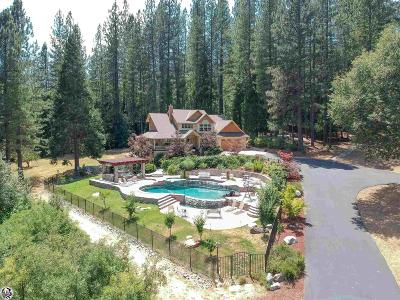 Tuolumne County Single Family Home For Sale: 23100 Kewin Mill