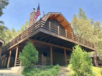 Twain Harte Single Family Home For Sale: 17176 Nile River Drive