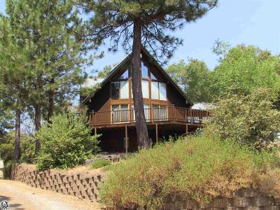 Twain Harte Single Family Home For Sale: 27010 Mountain Placer Road #27075 Mo