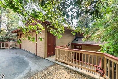Twain Harte Single Family Home For Sale: 22324 Twain Harte Drive