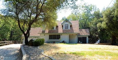 Sonora Single Family Home For Sale: 21302 Ridgeview Drive