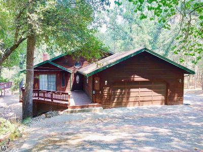 Groveland Single Family Home For Sale: 12401 Tannahill Dr