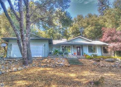 Groveland Single Family Home For Sale: 13215 Mueller Dr.
