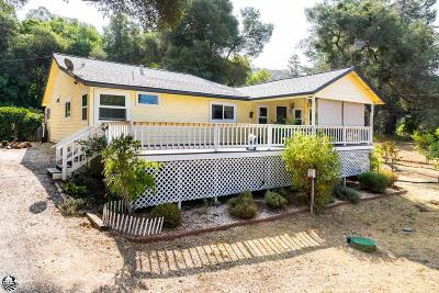 Sonora Single Family Home For Sale: 19753 Rawhide Road