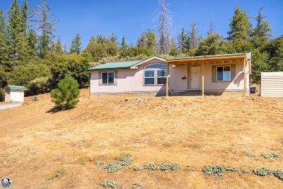 Groveland Single Family Home For Sale: 10887 Merrell Rd.