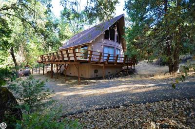 Sonora Single Family Home For Sale: 21864 Feather River Drive