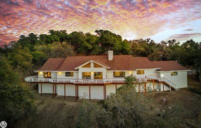 Sonora Single Family Home For Sale: 16592 Parkridge