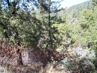 Tuolumne Residential Lots & Land For Sale: Lot 276 Canyonview