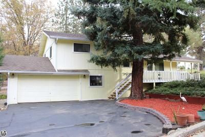 Groveland Single Family Home For Sale: 19980 Pleasant View Drive #Unit 1 L