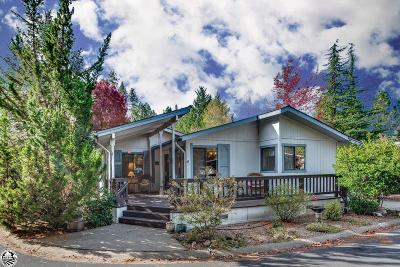 Murphys Mobile Home For Sale: 232 Rattlesnake Drive #232