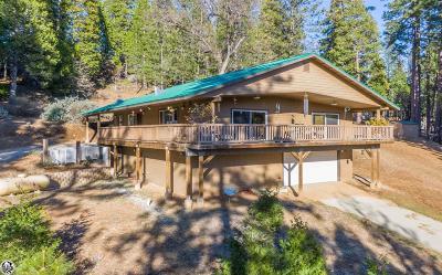 Twain Harte Single Family Home For Sale: 19960 Mountain Misery Road