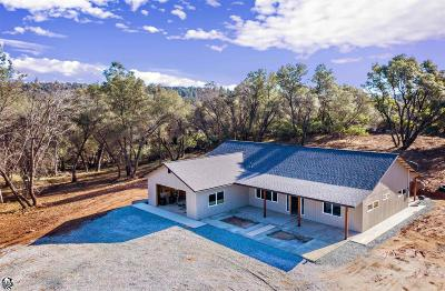 Sonora Single Family Home For Sale: 19707 Whitto Mine Road