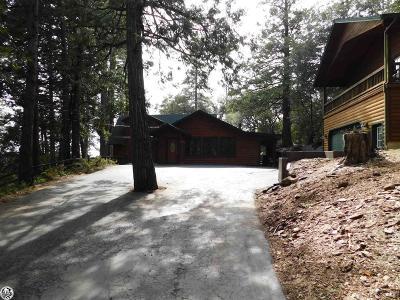 Twain Harte Single Family Home For Sale: 23580 Mt. Elizabeth Drive