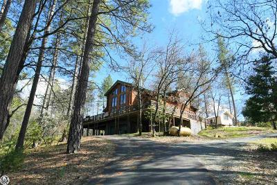 Groveland Single Family Home For Sale: 19301 Elder Lane
