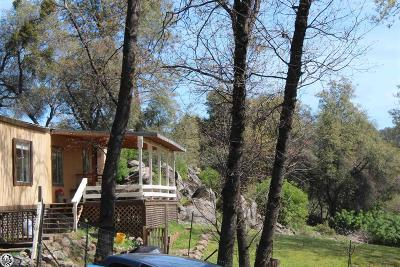 Sonora Single Family Home For Sale: 19289 Overlook Drive