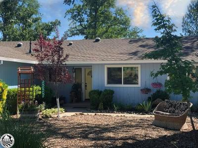 Sonora Single Family Home For Sale: 20625 Resort Road