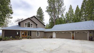 Mi Wuk Village Single Family Home For Sale: 23843 Awannata Place