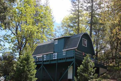 Groveland Single Family Home For Sale: 19252 Ferretti Road #18