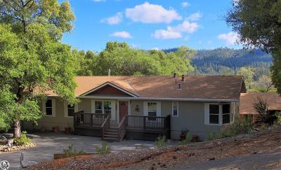 Groveland Single Family Home For Sale: 19030 Jones Hill Ct #1