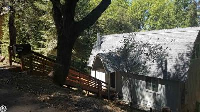 Twain Harte Single Family Home For Sale: 22442 Ridge Road
