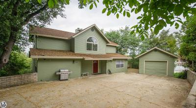 Sonora Single Family Home For Sale: 100 Hillcrest Drive