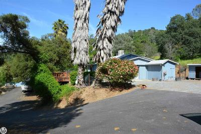 Sonora Single Family Home For Sale: 19539 Rawhide Road