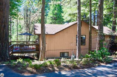 Twain Harte Single Family Home For Sale: 19497 Middle Camp Road