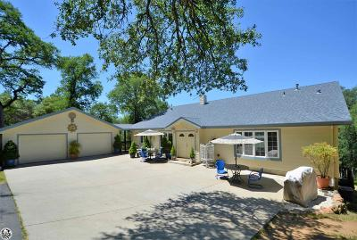 Sonora Single Family Home For Sale: 17252 Es La Vida Rd