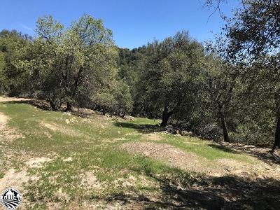 Sonora Residential Lots & Land For Sale: 22215 & 22221 Cadenza Drive