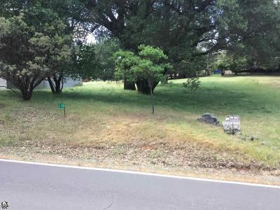 Groveland Residential Lots & Land For Sale: 19560 Plesant View