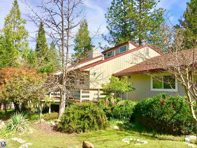 Groveland Single Family Home For Sale: 12007 Breckenridge Rd #93